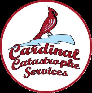 Cardinal Cat